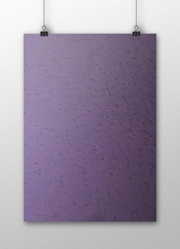 Plike - Purple
